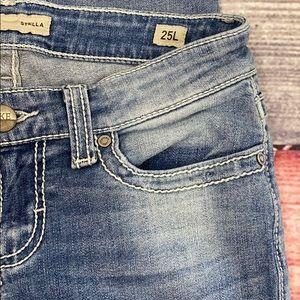 BKE Jeans - BKE Stella Skinny Stretch Distressed Jeans
